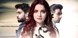 rasm-e-duniya-drama-on-ary-digital