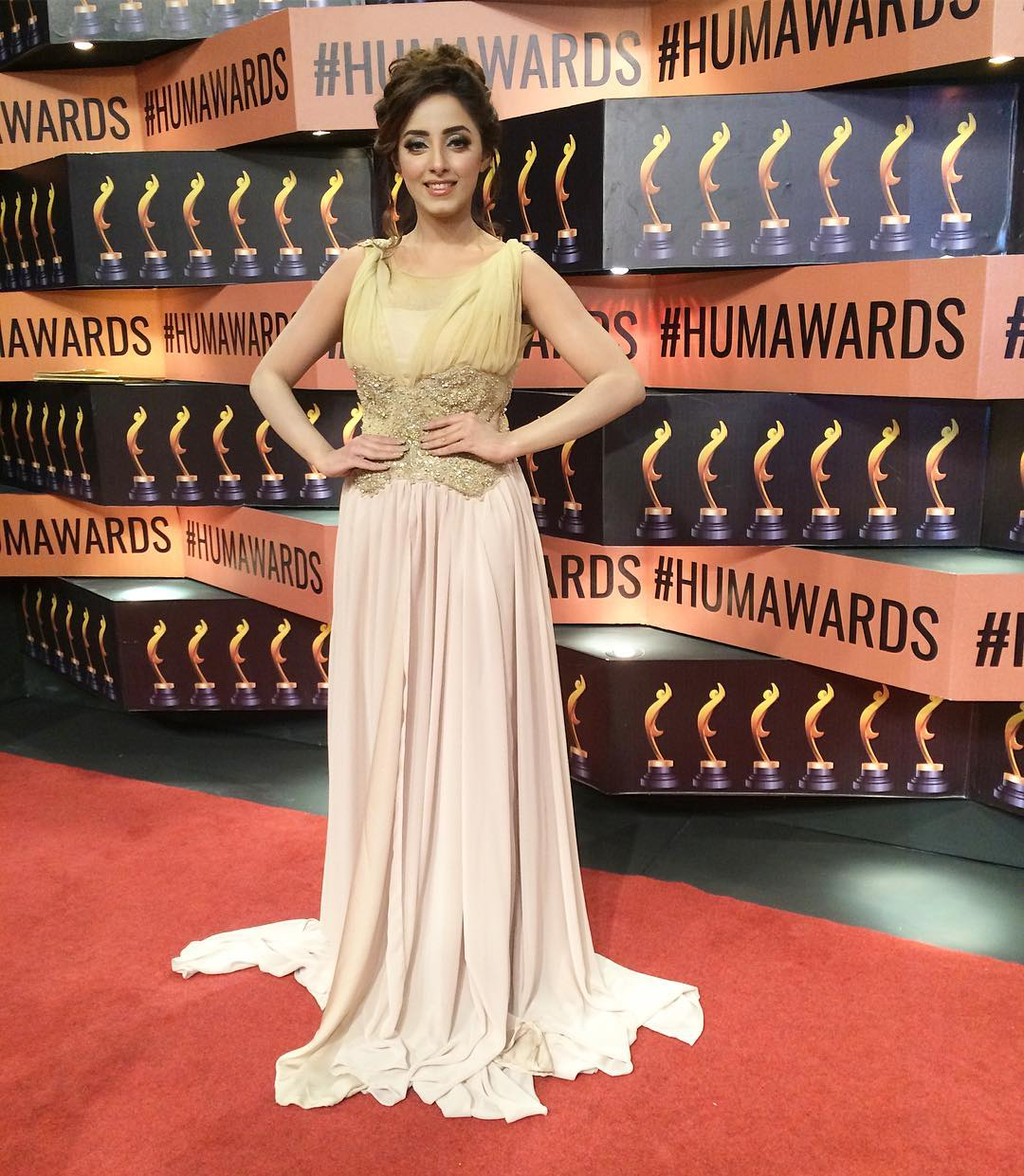 sanam chaudhry hum awards 2017 red carpet pictures