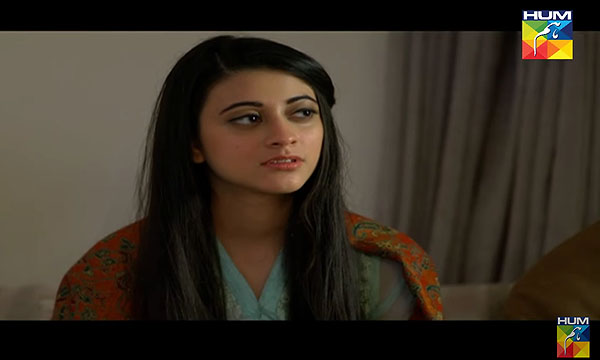 Best Female Villains In Pakistani Drama Industry